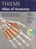 thieme anatomy atlas